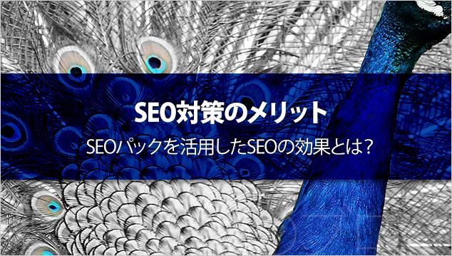SEO対策のメリット – SEOパックを活用したSEOの効果とは?